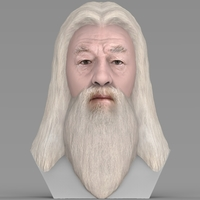Small Dumbledore from Harry Potter bust for full color 3D printing 3D Printing 283129