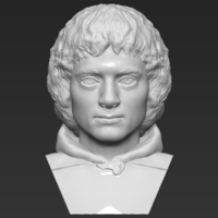 Small Frodo Baggins The Lord of the Rings bust 3D printing ready 3D Printing 283152