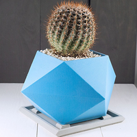 Small Spikey Planter 3D Printing 285228