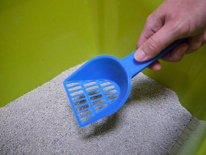 Cat Litter Scoop 3D Print 30173