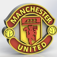 Small Manchester United Logo 3D Printing 316005