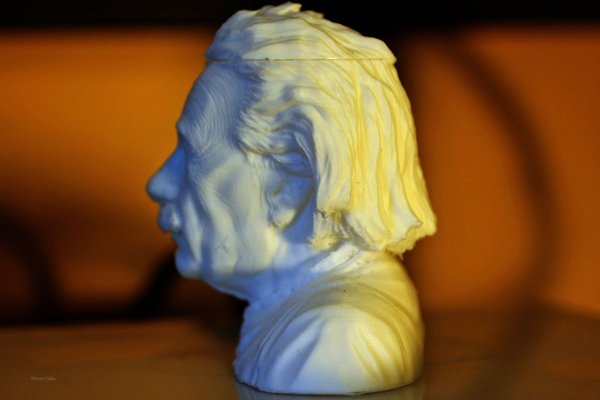 Medium Einstein Bust (14K) 3D Printing 33158