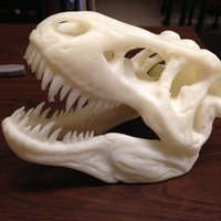 Small The T-Rex Skull 3D Printing 34091