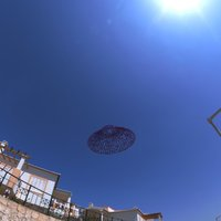 Small UFO :-)  in stile Voronoi 3D Printing 37639