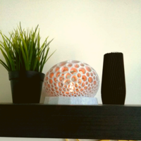 Small Voronoi lamp 3D Printing 392345