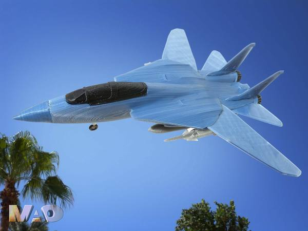 Medium F14 TOMCAT 3D Printing 39315