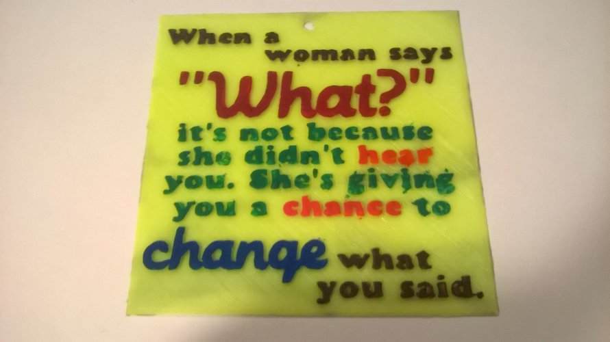 Change Said Sign 3D Print 39552