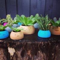 Small Happy Planters- Large 3D Printing 4372