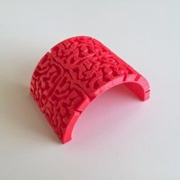 Small Brain Curve 3D Printing 44785