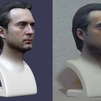 Small Head Bust 3D Printing 4497