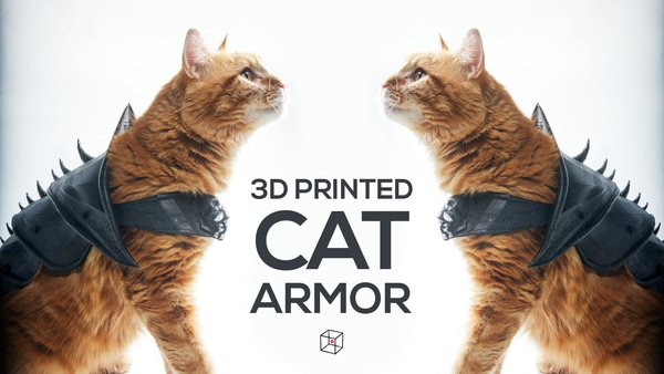 Medium CAT ARMOR 3D Printing 46396