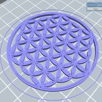 Small The Flower Of Life 3D Printing 46773