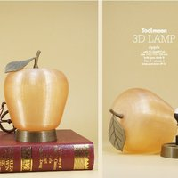 Small Apple lamp 3D Printing 48200