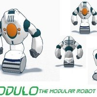Small Modulo 3D Printing 48817
