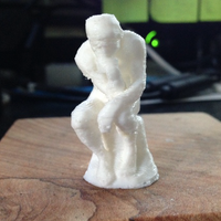 Small The Thinker 3D Printing 53269