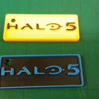 Small Halo 5 Key fob 3D Printing 53766