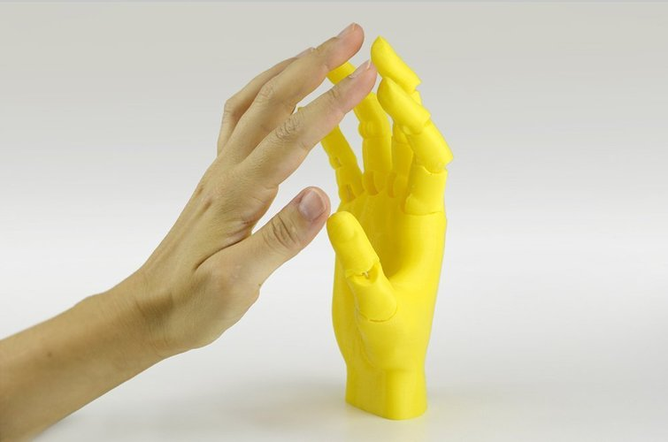 Jointed Hand 3D Print 54190