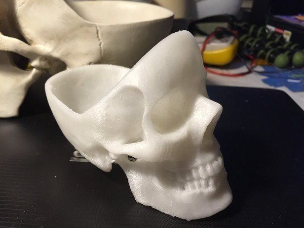 Medium skull Ashtray 3D Printing 57428