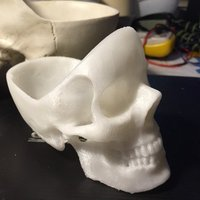 Small skull Ashtray 3D Printing 57428