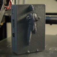 Small Han Solo in Carbonite - Raspberry Pi 2/B+ Case 3D Printing 57844