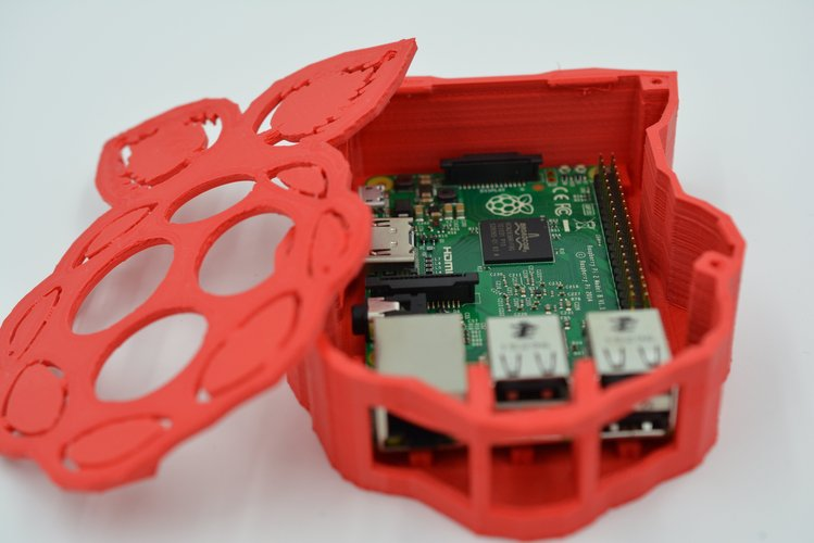 Raspberry-shaped Raspberry Pi Case 3D Print 61068