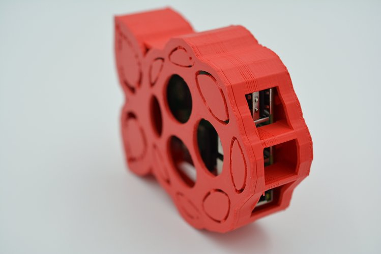 Raspberry-shaped Raspberry Pi Case 3D Print 61069
