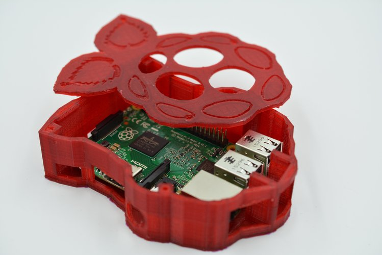 Raspberry-shaped Raspberry Pi Case 3D Print 61070