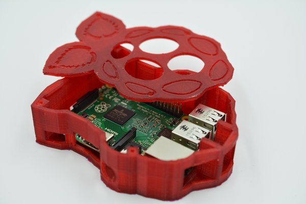 Medium Raspberry-shaped Raspberry Pi Case 3D Printing 61070