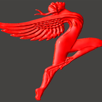 Small Wings 3D Printing 64822