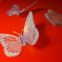 Small Hinged butterfly 3D Printing 66072