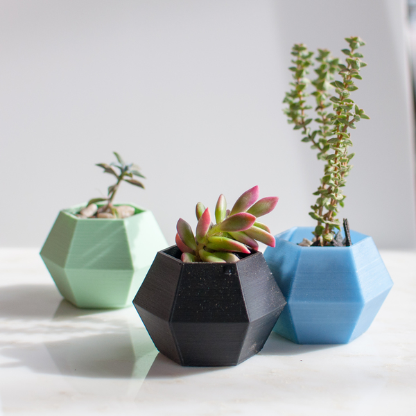 Medium Hexagon Planter 3D Printing 66282