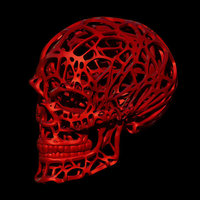 Small Wired Skull 3D Printing 68820