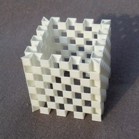 Small Es-Cage Cube (4 versions) 3D Printing 69629