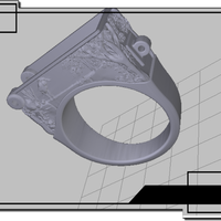 Small Ring with a secret 3D Printing 74264