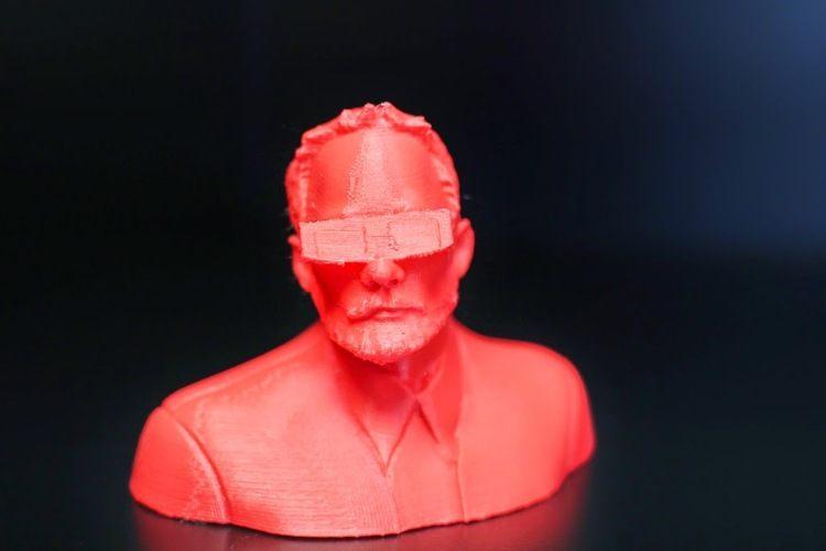 Bill Murray 3D 3D Print 747