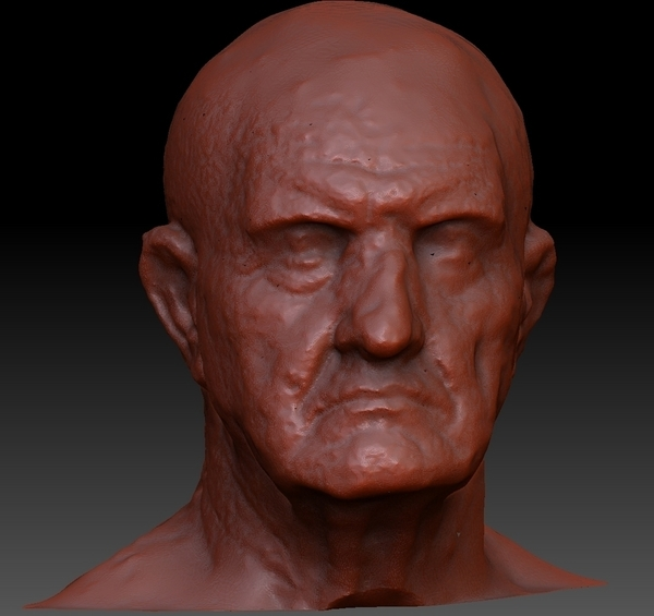 Medium Marble Bust of a Man 3D Printing 75726