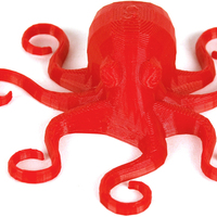 Small Flexible Octopus 3D Printing 79034