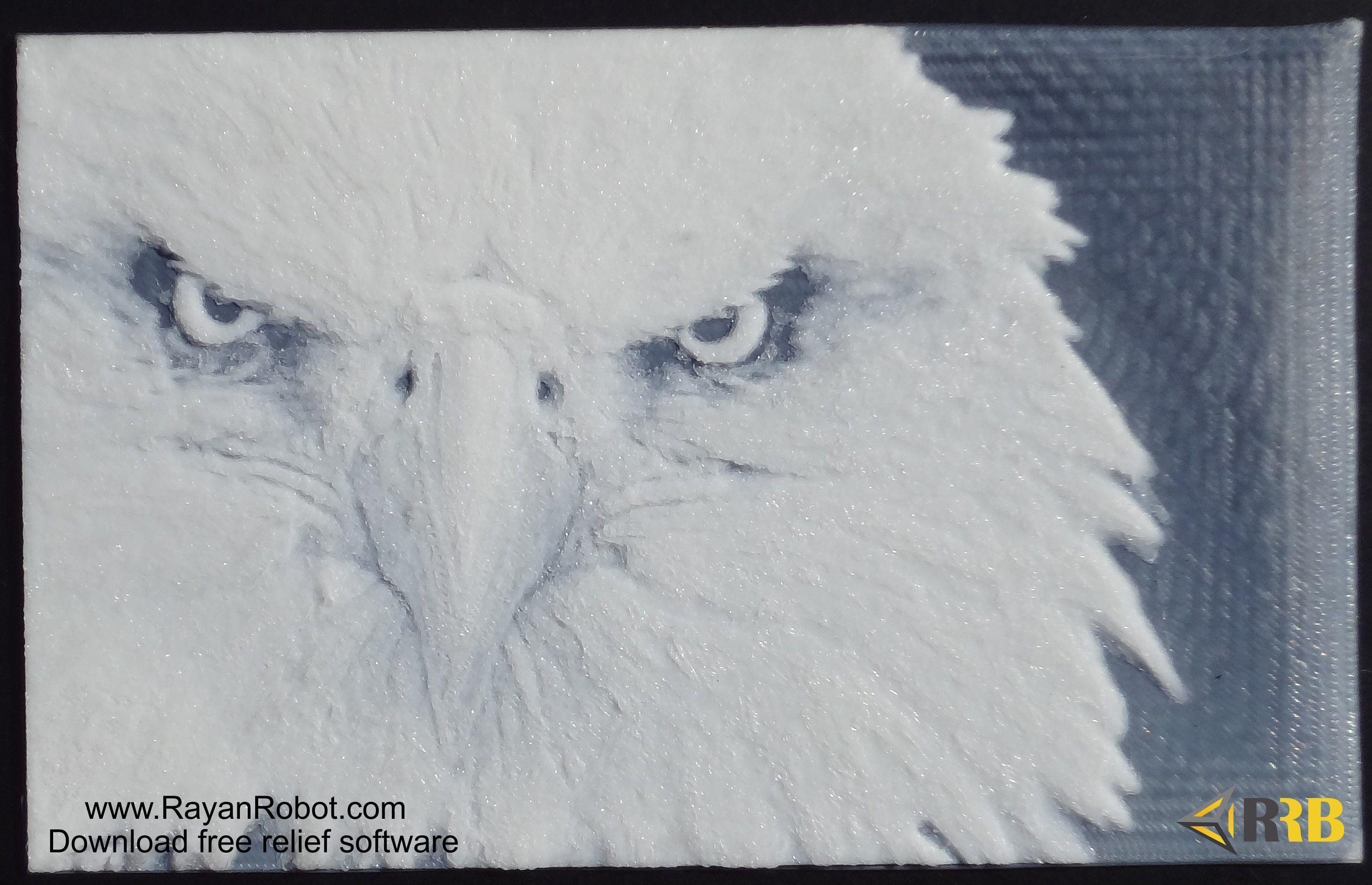 3D Printed Eagle relief by masih akbari | Pinshape