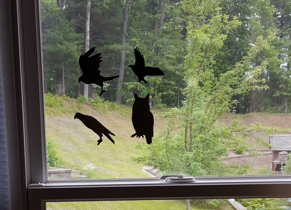 D Printed Bird Decals For Bird Safety By Barbdprintny Pinshape - Window decals for bird safety