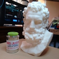 Small Marble Head of Herakles (near life-size) 3D Printing 89063