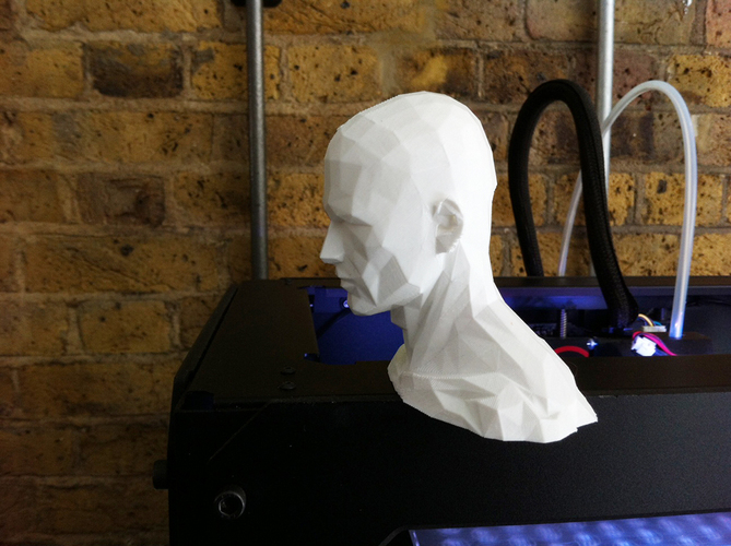 Low poly HEAD - remix 3D Print 89829
