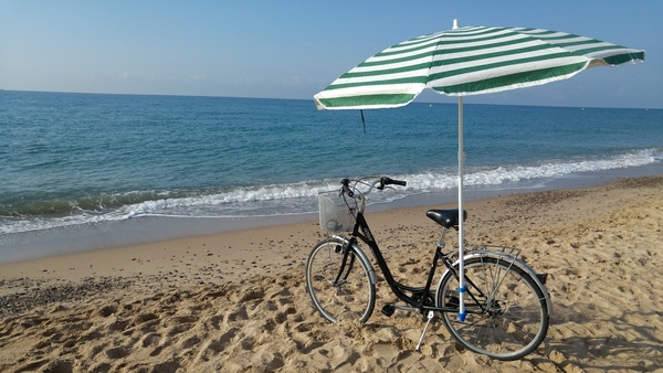 Medium Bike accessory for a beach umbrella 3D Printing 90762