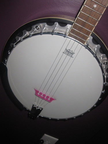 5 string banjo bridge and thumb pick 3D Print 90885