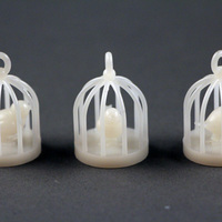 Small Bird Cages  3D Printing 91099