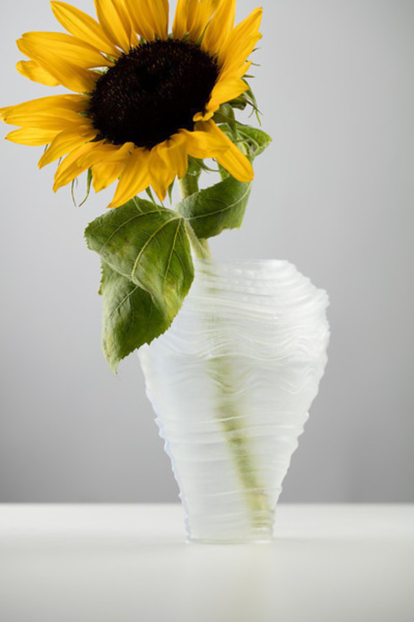 Medium Wind Sculpted Vases 3D Printing 91912