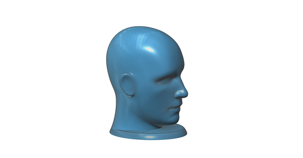 Medium Figurine, bust, -  head on a stand 3D Printing 93159