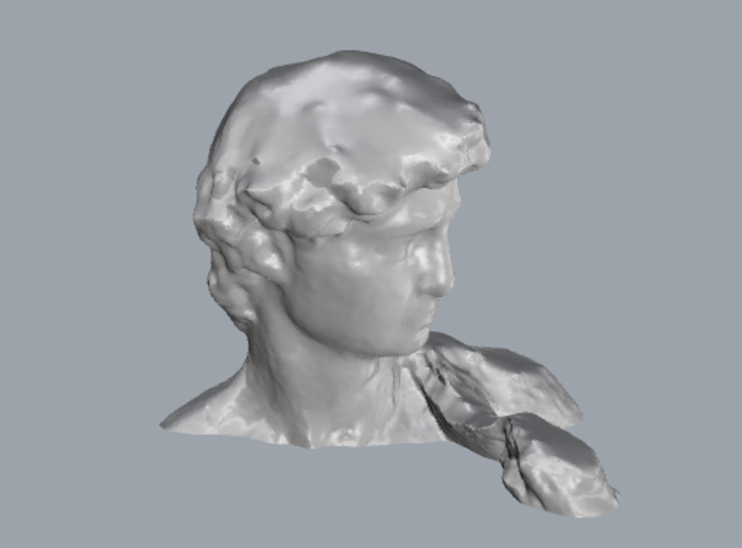 David_By_Michelangelo_Sculpture 3D Print 93436