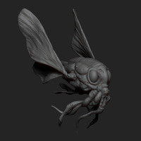 Small Pre-Historic Fly 3D Printing 9431