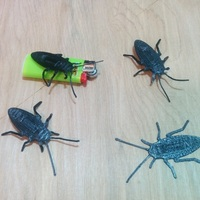 Small Cockroach 3D Printing 96848