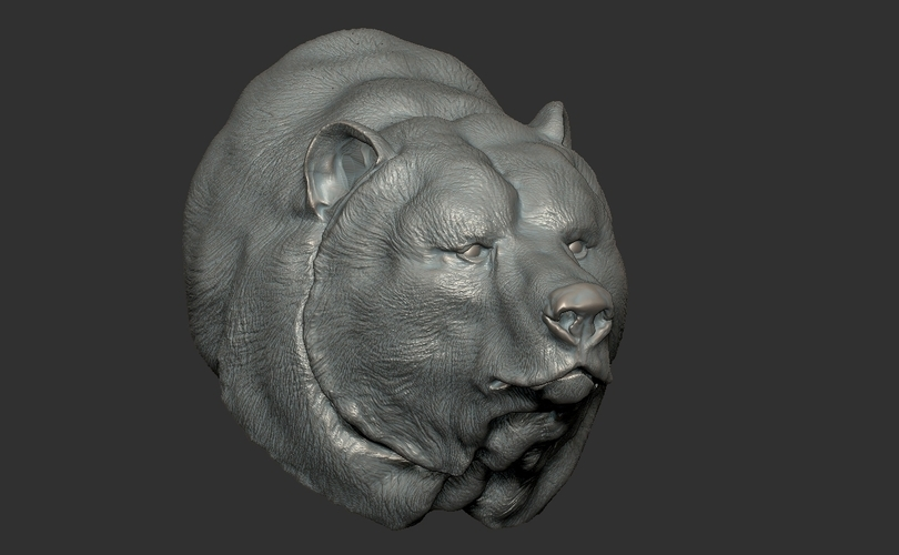 Grizzly bear bust 3D Print 97397